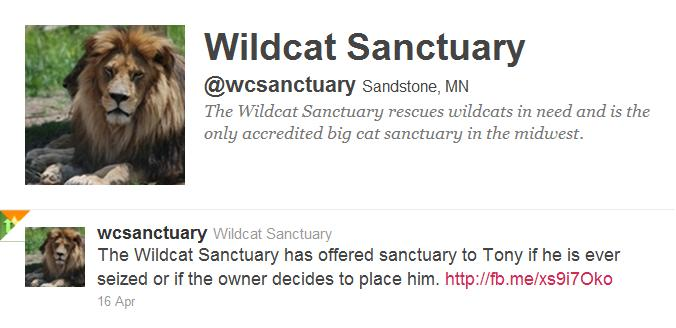 wildcat sanctuary 4 tony