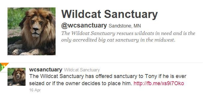 wildcat sanctuary 4 tony