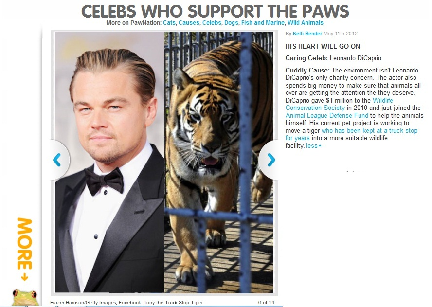 http://www.pawnation.com/2012/05/11/celebs-who-support-the-paws#photo=6