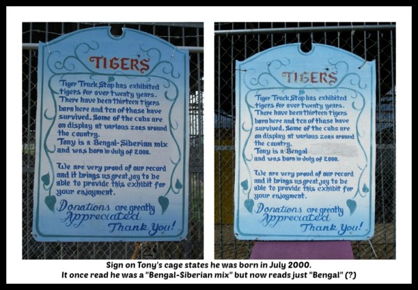 sign comparison